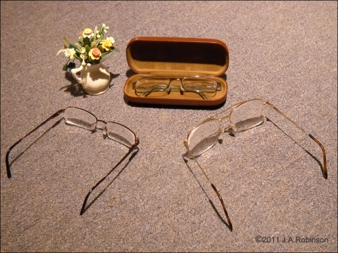 A pair of eyeglasses in a case that looks like a coffin with 2 onlooking pairs of glasses