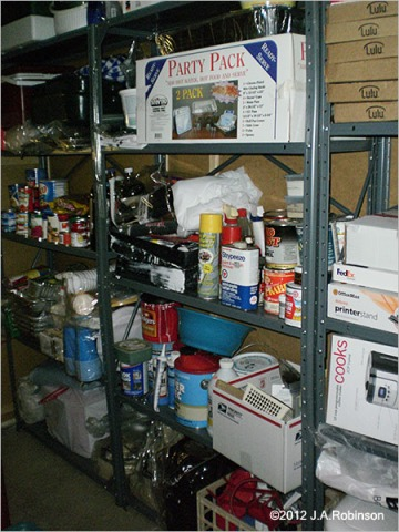 "Photo of basement storage shelves full of ""stuff"""