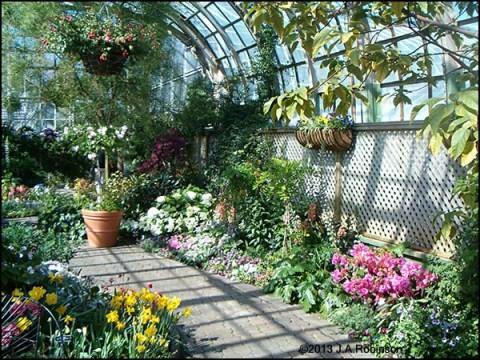 2013_03_05 Inside Conservatory