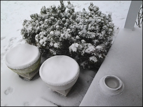 Frozen Urns