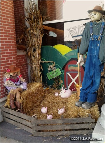 Scarecrow Display