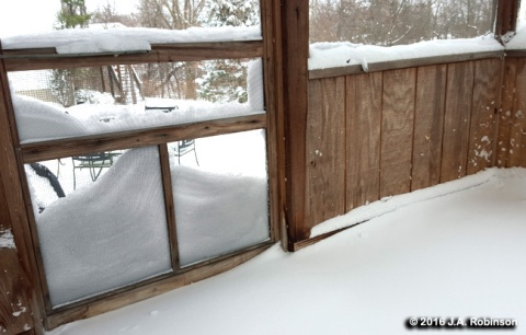 2016_02_03 Snow on Screen Door