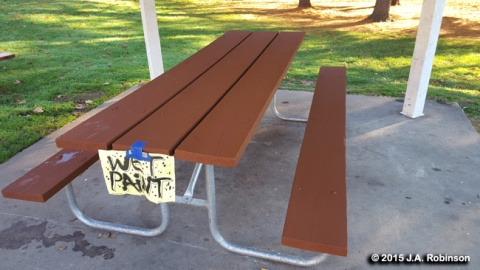 2016_02_10 Ridges Picnic Table