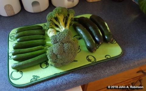 veggies-on-drying-mat