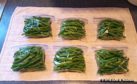 bagged-green-beans