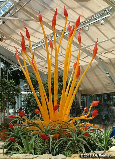 glass-flame-plant