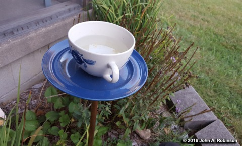 outside-cup-and-saucer