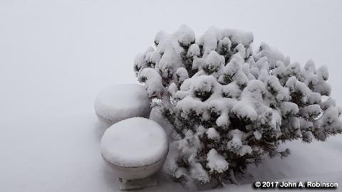 snowy-stoop-planters